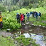 gintys-pond-tour