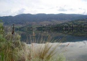 Kilpoola Lake IBA Tour