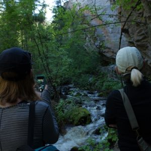 Chute Creek Hiking