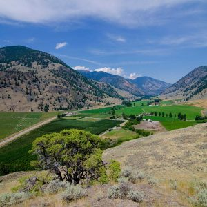 Organics in the Similkameen